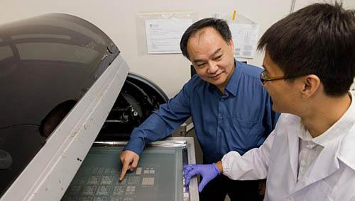 Процесс нанесения печатной схемы на обои